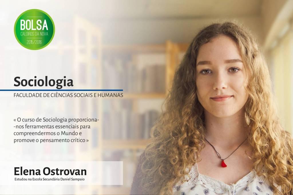 Elena Ostrovan, Faculdade de Ciências Sociais e Humanas da NOVA