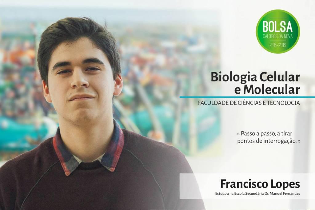 Francisco Lopes, Faculdade de Ciências e Tecnologia da NOVA