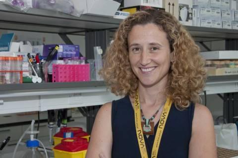 Catarina Homem, investigadora do CEDOC da NMS | FCM, vencedora de uma bolsa do Concelho Europeu de Investigação (ERC)