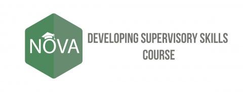 Curso de Desenvolvimento de Competências de Supervisão