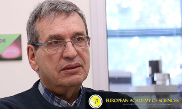 Professor Rodrigo Martins