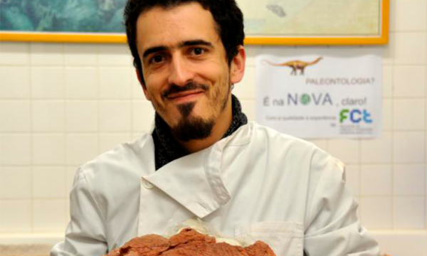 Descoberta de fóssil de Placodonte em Portugal