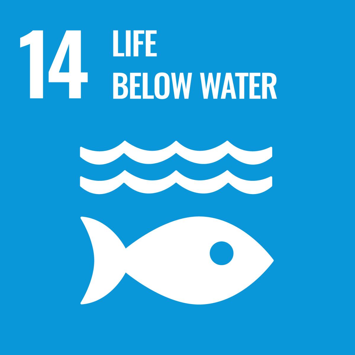ODS 14 - Proteger a vida marinha