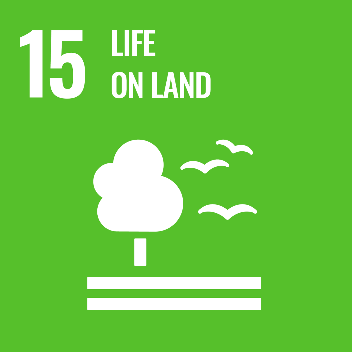 SDG 15 - Life on Land