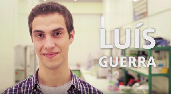 Luís Guerra (FCT), Engenharia Civil