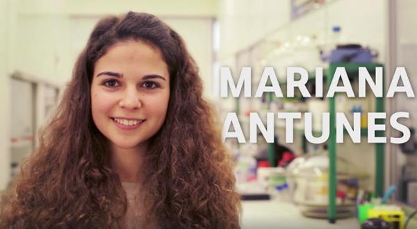 Mariana Antunes (FCT), Química Aplicada