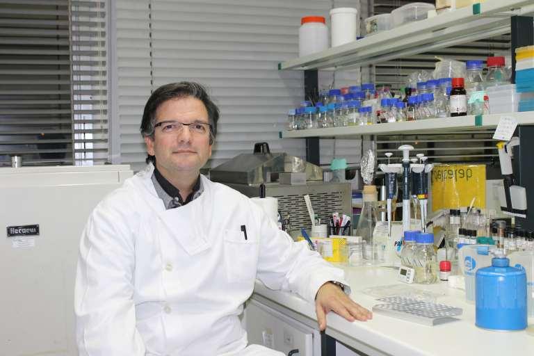 Professor Miguel Viveiros