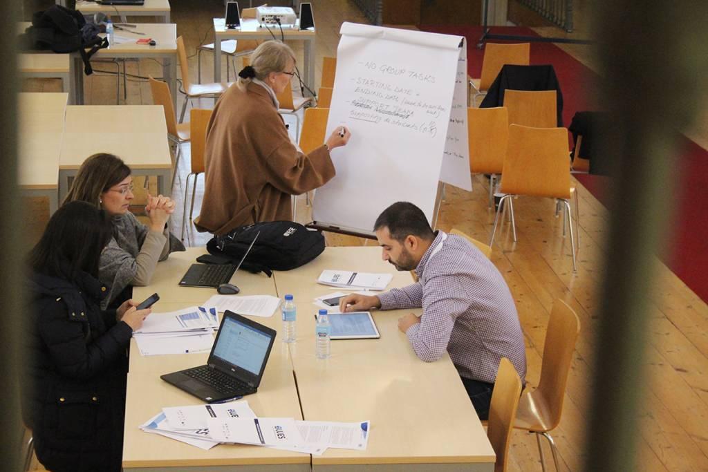 BLUES Consortium Training Session at NOVA, November 2018