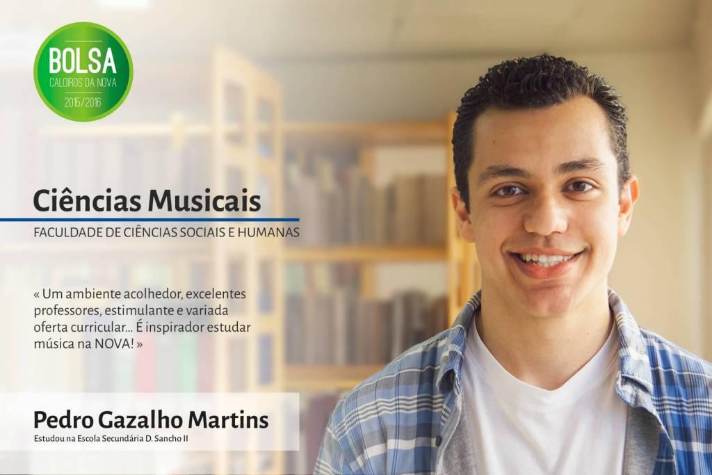 Pedro Gazalho Martins, Faculdade de Ciências Sociais e Humanas da NOVA