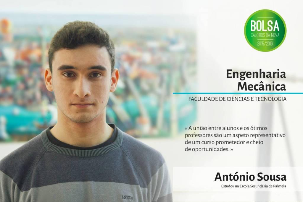 António Sousa, Faculdade de Ciências e Tecnologia da NOVA