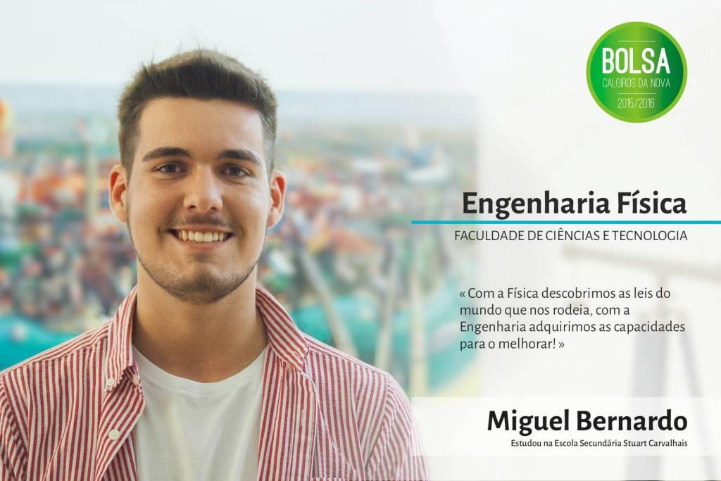 Miguel Bernardo, Faculdade de Ciências e Tecnologia da NOVA