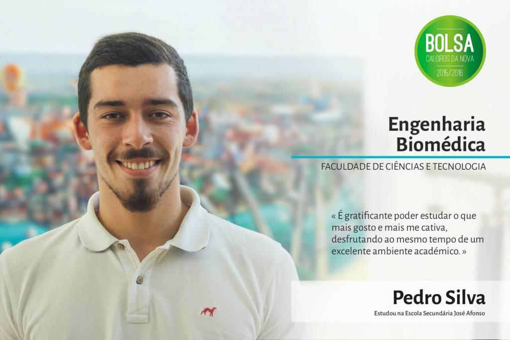 Pedro Silva, Faculdade de Ciências e Tecnologia da NOVA