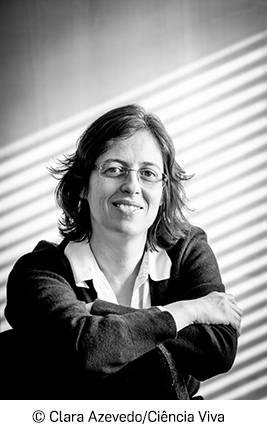 Mariana Gomes de Pinho distinguida com Bolsa ERC Consolidator