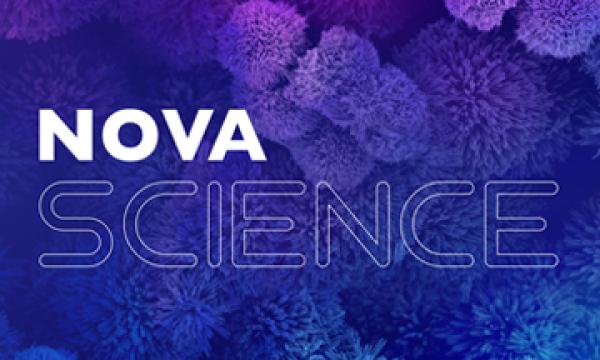 Research at NOVA