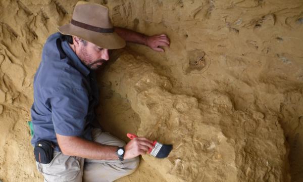 Octávio Mateus - paleontólogo FCT NOVA